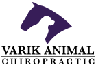 Dr Kristin Varik : Equine, Canine and Human Chiropractic